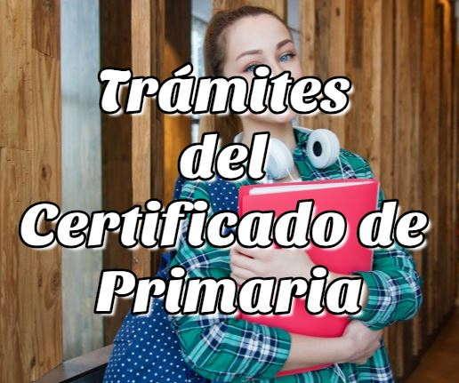 Consulta aquí los trámites del Certificado de Primaria